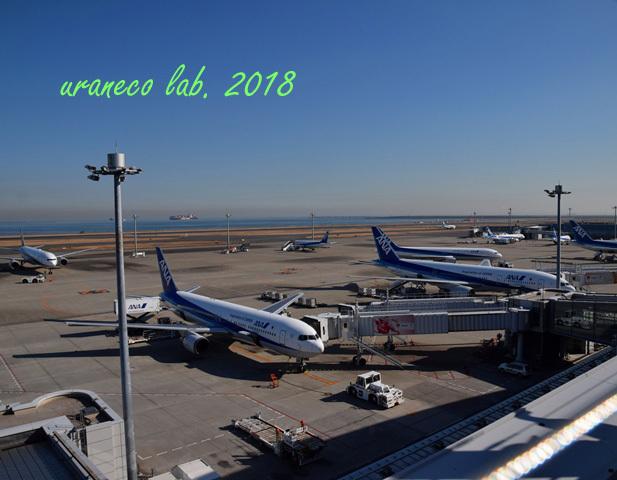 1月11日羽田空港