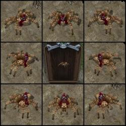 ECクライアント側蜘蛛8方向と蜘蛛像