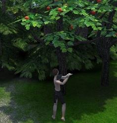 木こりをしたり…
