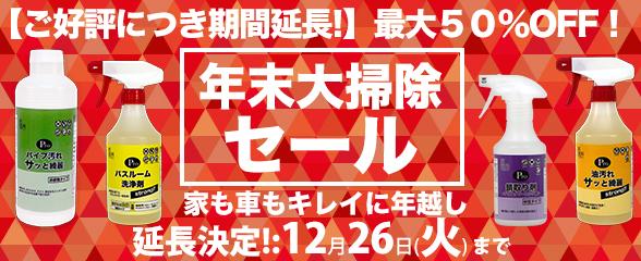 holidaysale17_main2.jpg