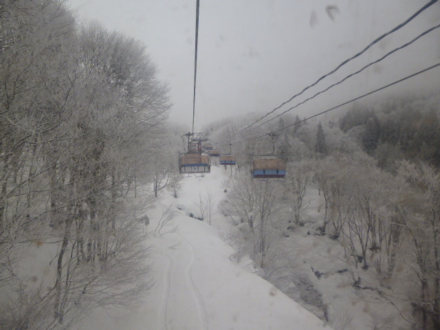 119雪花