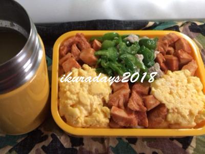 20180119_お弁当