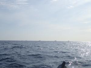 P1280010 10時30頃遊漁船はなじとこころに集まってる