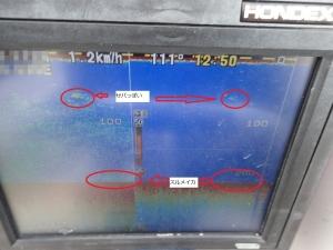 P2090014 イカの反応捉えた