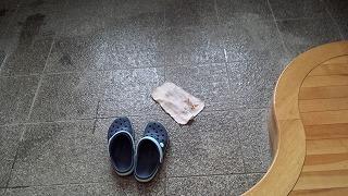 17玄関掃除 (1)