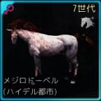 交配62♀01