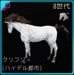 交配71♀01