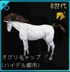 交配71♂01