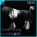 交配79♂01