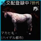 交配89♂01