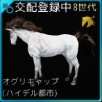 交配94♂01