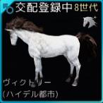 交配105♂01