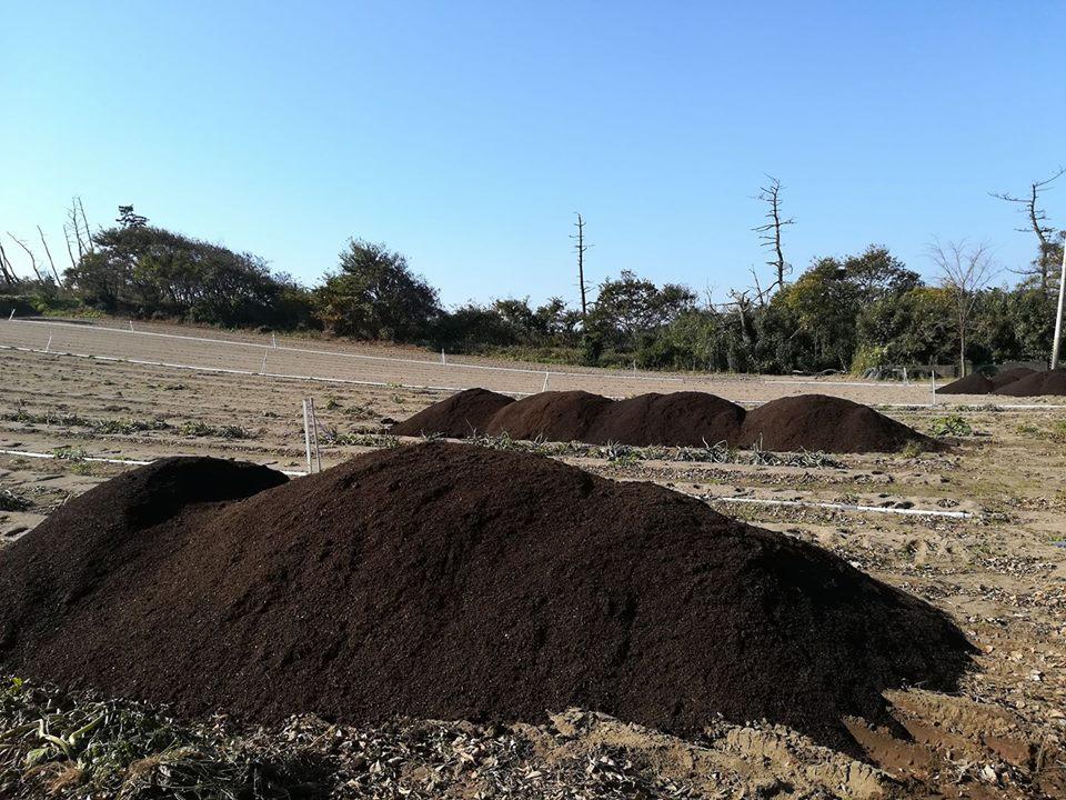 堆肥運び込み