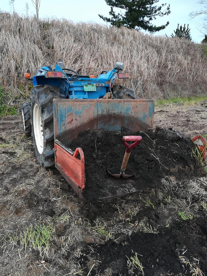 堆肥撒き1