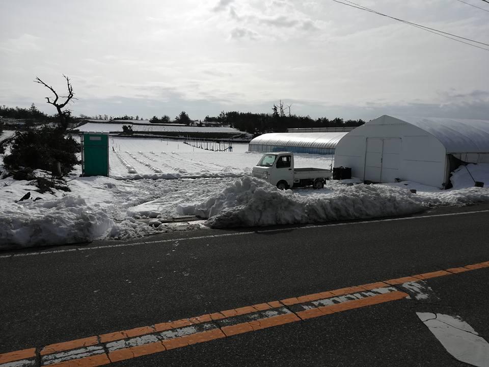 雪解けの様子1