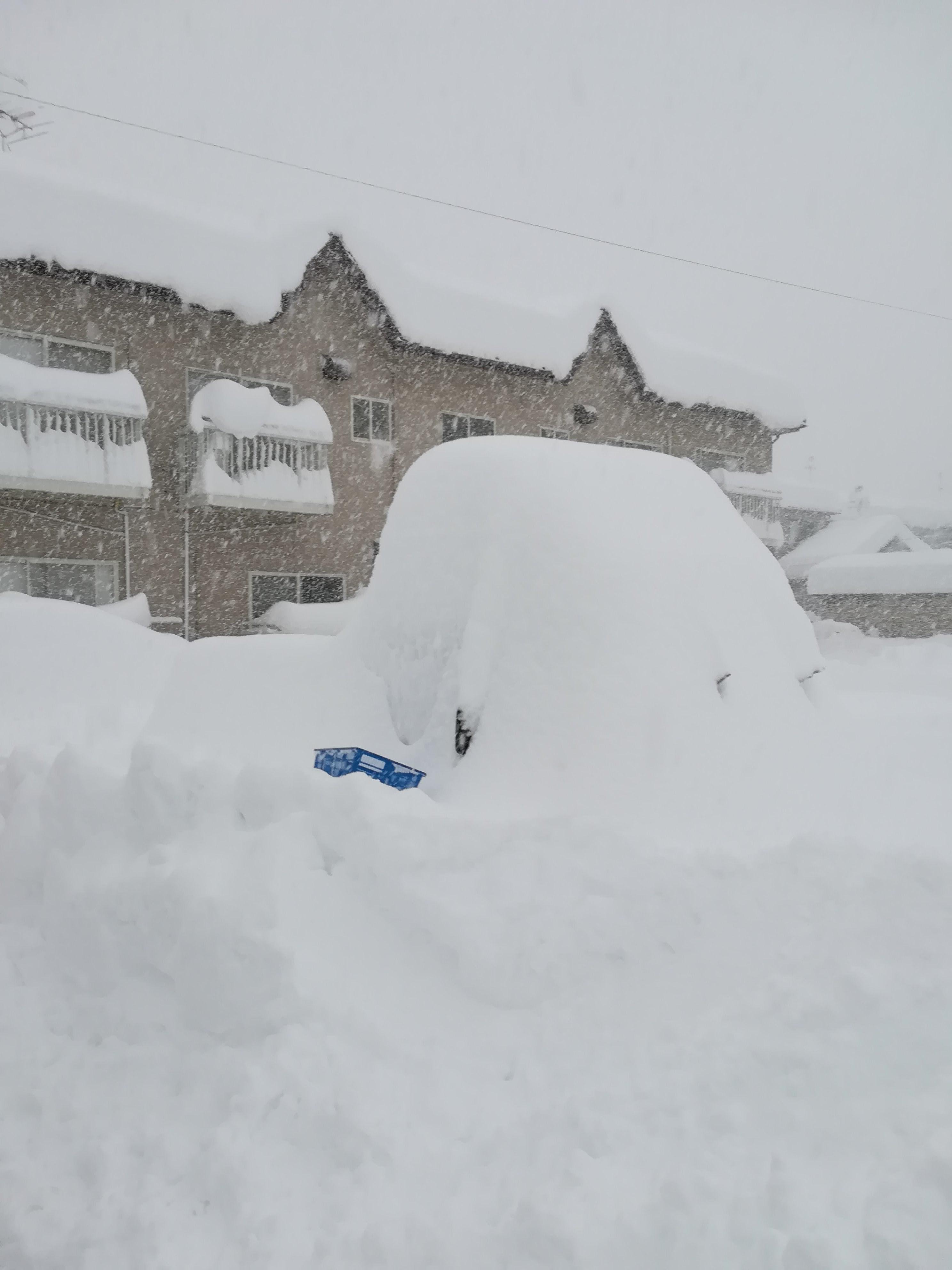 積雪の様子_軽トラ