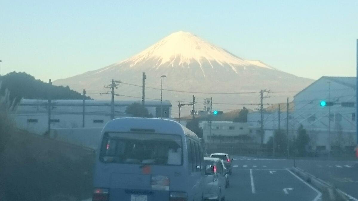 静岡遠征0211