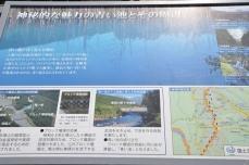 青い池の案内文