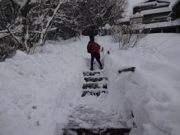 金沢カープの皆さんと階段除雪を