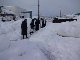 道なき歩道を除雪