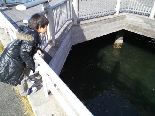 横浜方面で釣り (6)