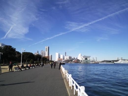 横浜方面で釣り (9)