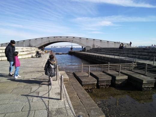 横浜方面で釣り (17)