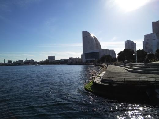 横浜方面で釣り (20)