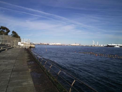 横浜方面で釣り (21)