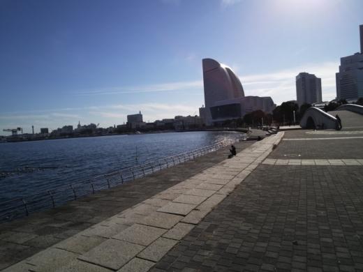 横浜方面で釣り (24)
