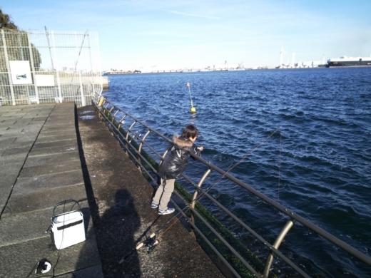 横浜方面で釣り (27)