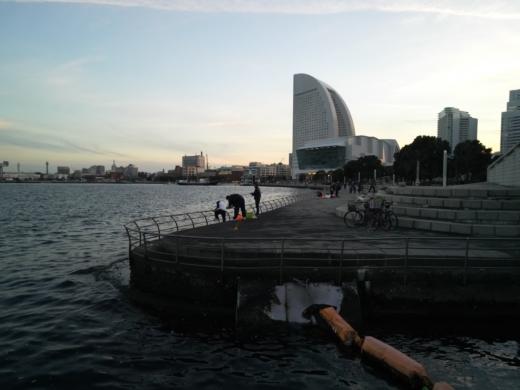 横浜方面で釣り (29)