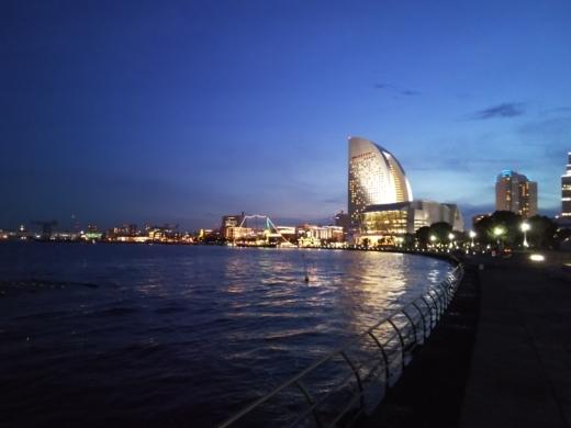 横浜方面で釣り (30)