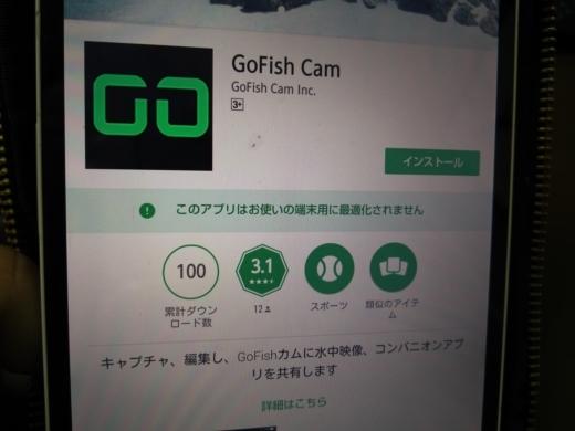 GOFISH CAM (16)
