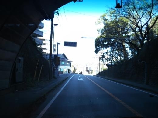 葉山港釣り (12)