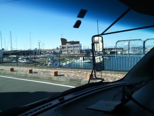 葉山港釣り (13)