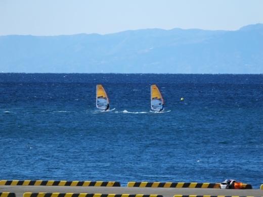 葉山港釣り (2)