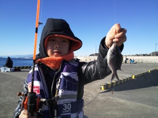 葉山港釣り (30)