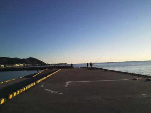 葉山港釣り (34)
