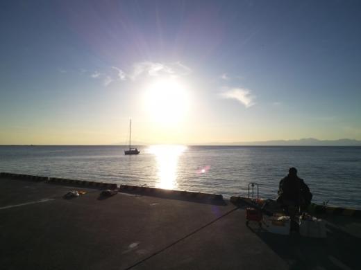 葉山港釣り (35)