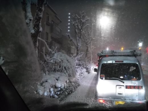 2018大雪 (13)