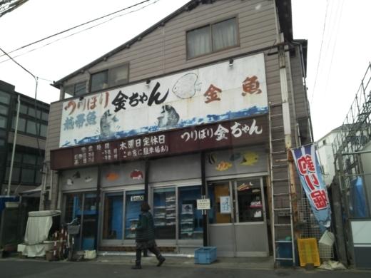 2018釣り堀金ちゃん (2)