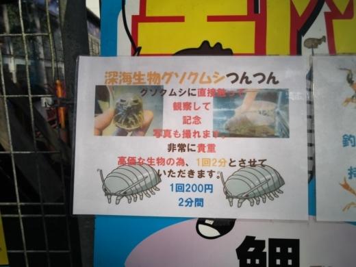スーパーフィッシング豊島園 (26)