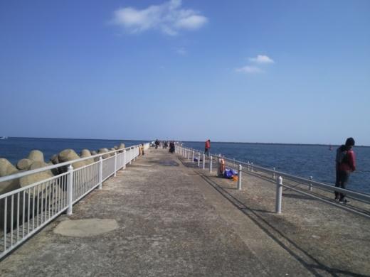 鹿島海釣園 (12)