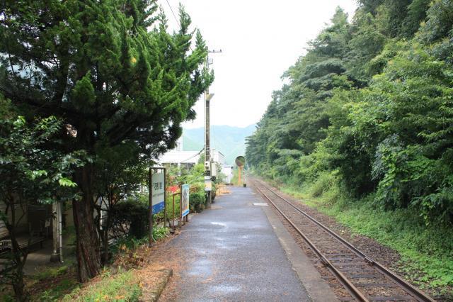 三江404
