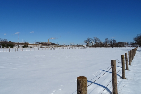 さくら草公園雪景色20180125