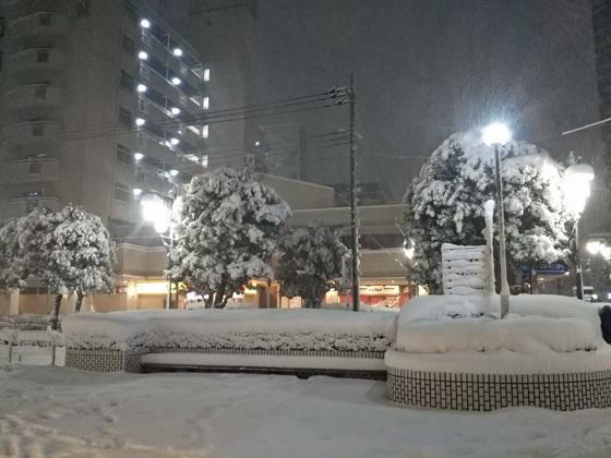 大雪@埼玉