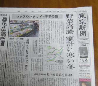 野菜高騰新聞記事1