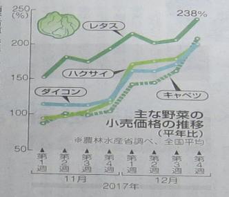 野菜高騰新聞記事2