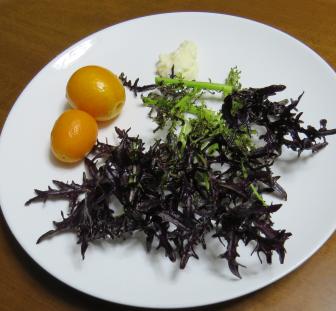 コーラルリーフを使ったサラダ2